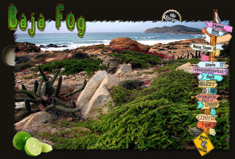 cactuscoast_frame_800