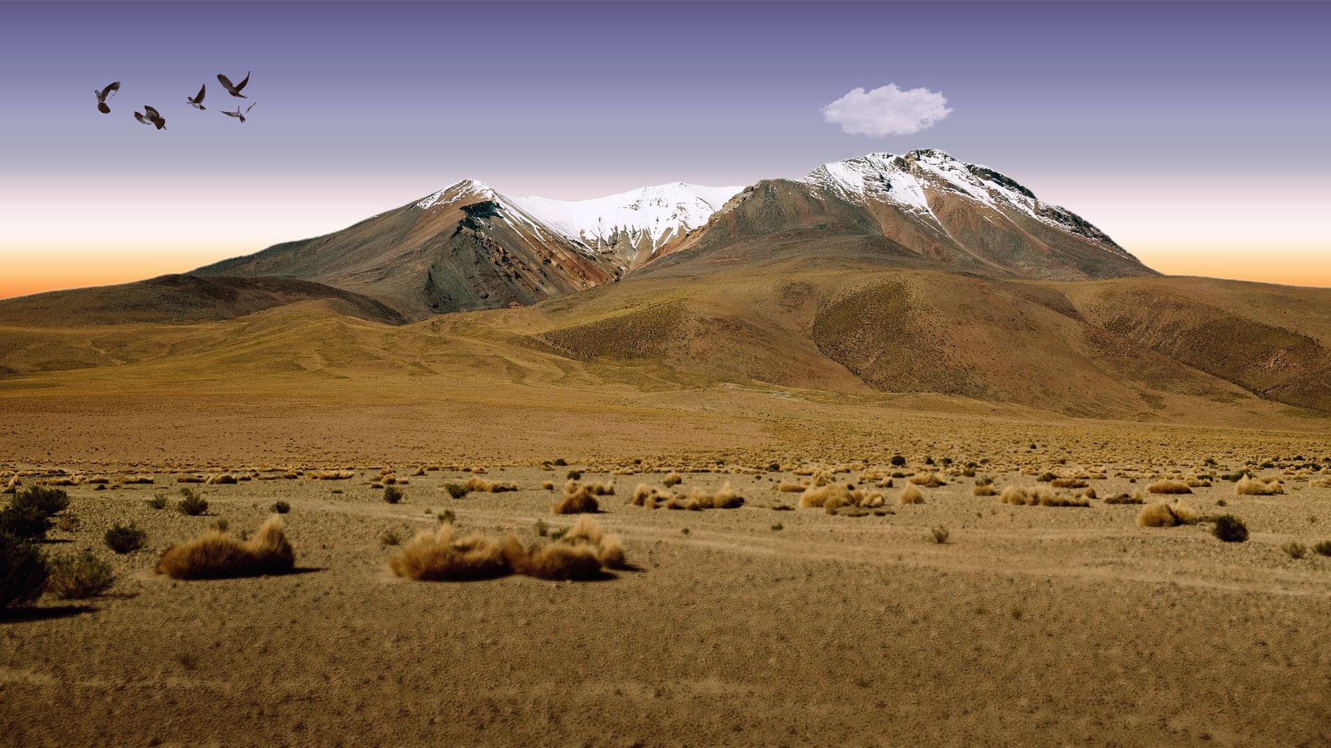 Toyota Of The Desert >> Gallery - Baja Fog